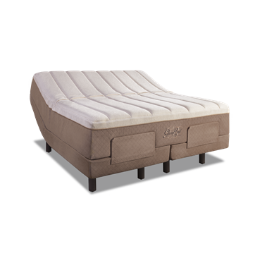 Tempur Pedic Grandbed Reviews Tempur Pedic Mattress
